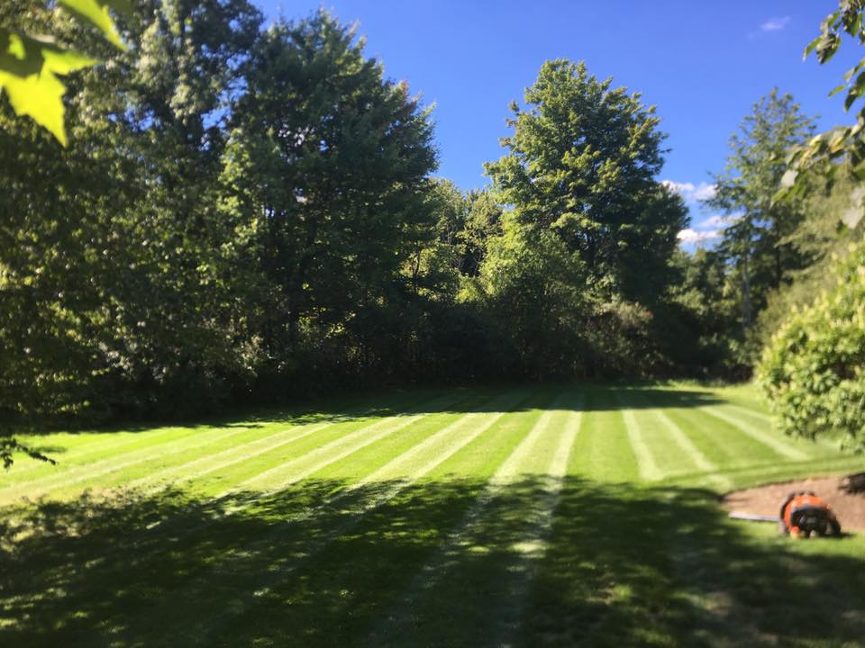 Lawn Maintenance Cleveland Pepper Pike and Chesterland
